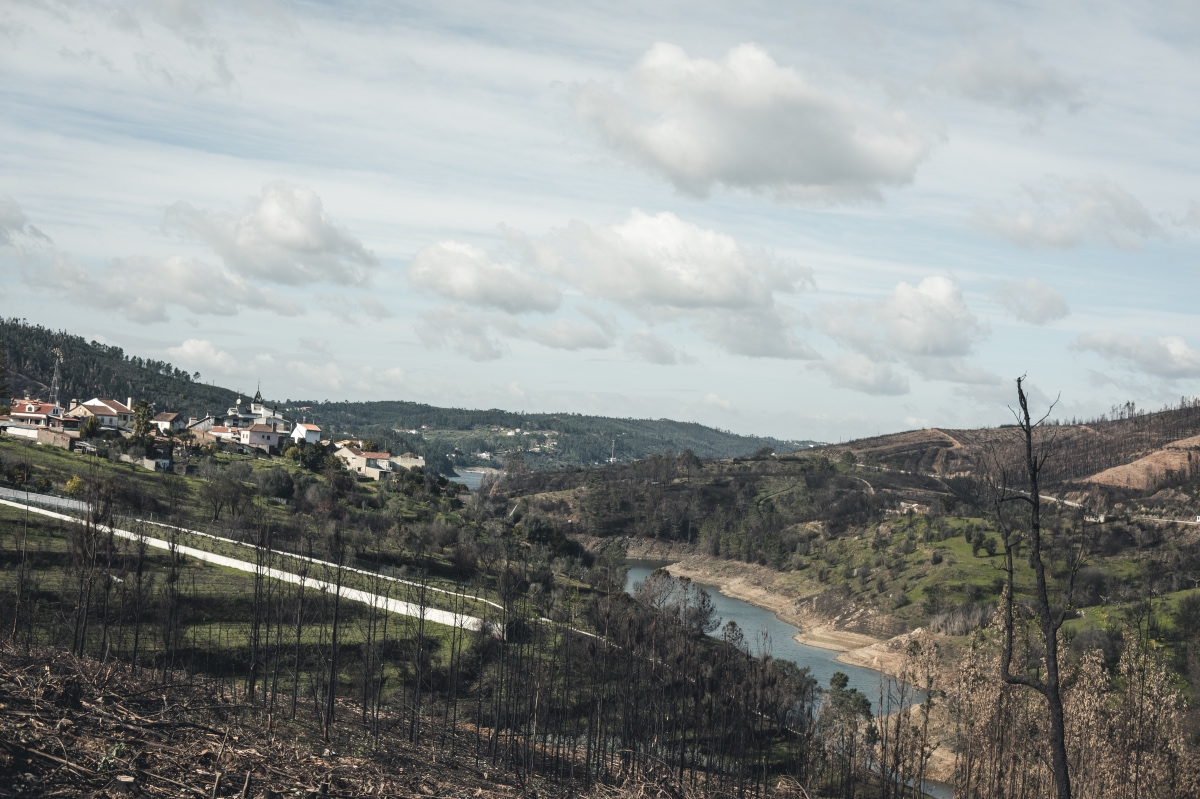 aldeia do mato